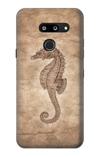 Printed Seahorse Old Paper LG G8 ThinQ Case