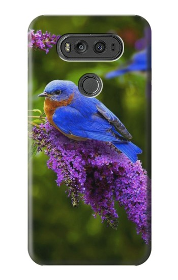 Printed Bluebird of Happiness Blue Bird LG G Flex 2 Case