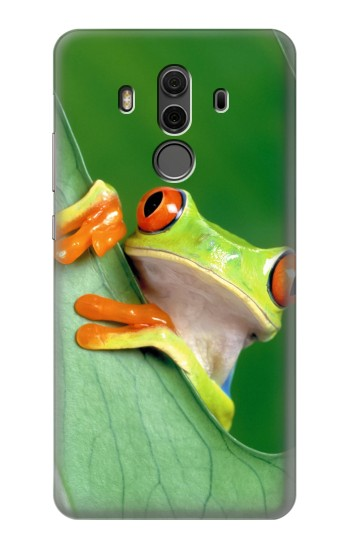 Printed Little Frog Huawei Mate 10 Pro, Porsche Design Case