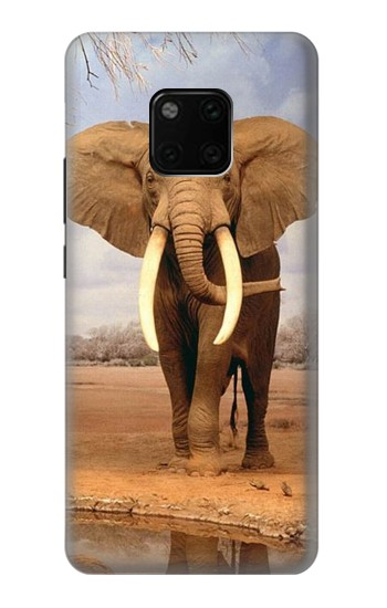 Printed African Elephant Huawei Mate 20 Pro Case