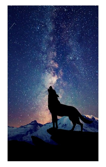 Printed Wolf Howling Million Star Macbook Air 13.3 New Case