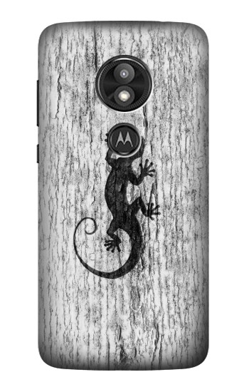 Printed Gecko Wood Graphics Printed Motorola Moto E5 Play Case