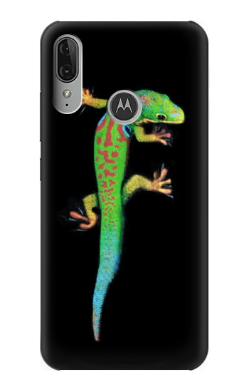 Printed Green Madagascan Gecko Motorola Moto E6 Plus Case
