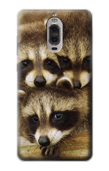 Printed Baby Raccoons Huawei Ascend P6 Case