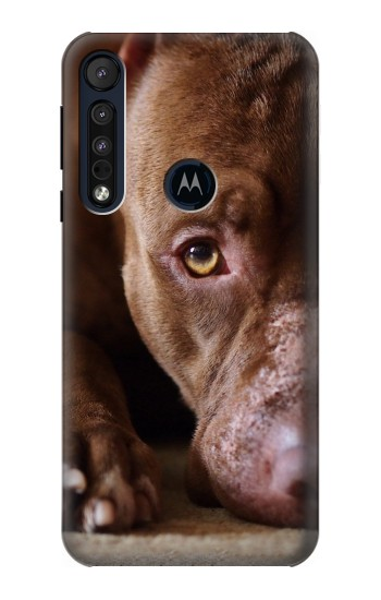 Printed PitBull Face Motorola One Macro Case