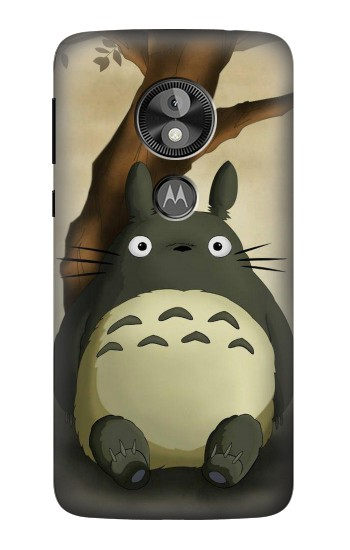 Printed My Neighbor Totoro  Case