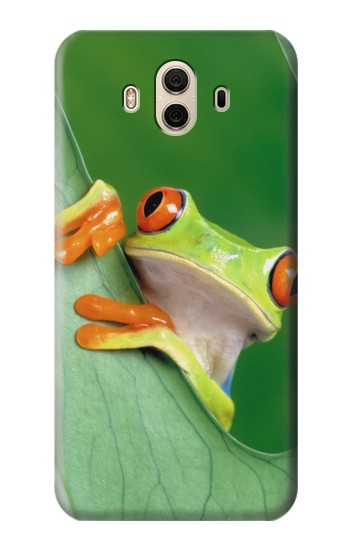 Printed Little Frog Huawei Honor 5X Case