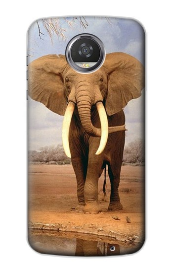 Printed African Elephant HTC Desire 310 Case