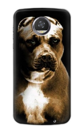 Printed PitBull HTC Desire 310 Case