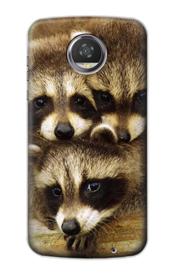 Printed Baby Raccoons HTC Desire 310 Case