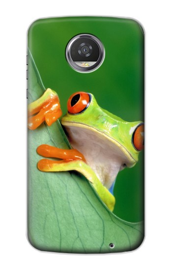 Printed Little Frog HTC Desire 310 Case