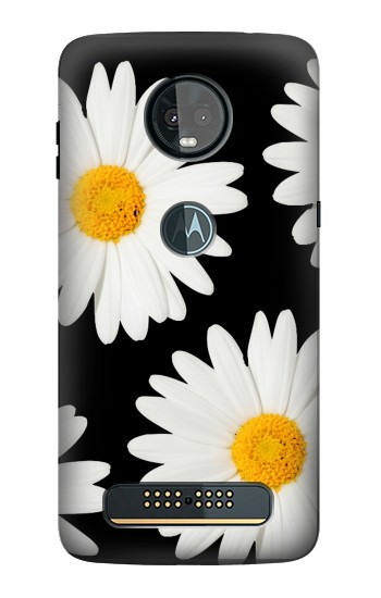 Printed Daisy flower Motorola Moto Z3, Z3 Play Case