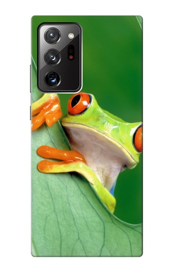 Printed Little Frog Samsung Galaxy Note 20 Ultra Case