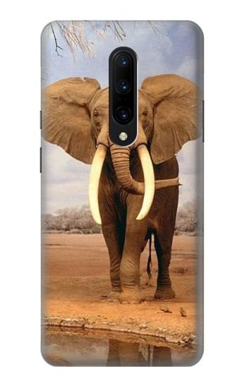 Printed African Elephant OnePlus 7 Pro Case