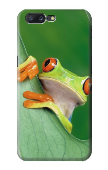 Printed Little Frog Asus Zenfone 6 A600CG Case