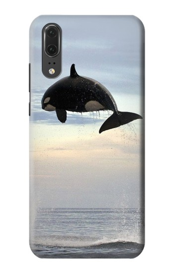 Printed Killer whale Orca Huawei P20 Case