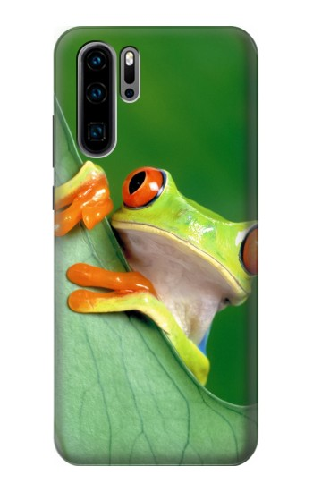 Printed Little Frog Huawei P30 Pro Case