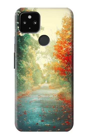 Printed Road Through The Woods Google Pixel 4a 5G Case