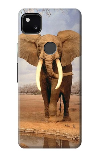 Printed African Elephant Google Pixel 4a Case