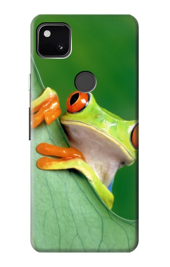 Printed Little Frog Google Pixel 4a Case