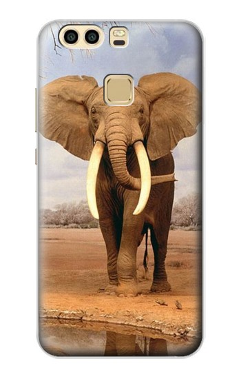 Printed African Elephant Huawei P9 Plus Case