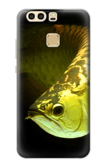 Printed Gold Arowana Fish Huawei P9 Plus Case
