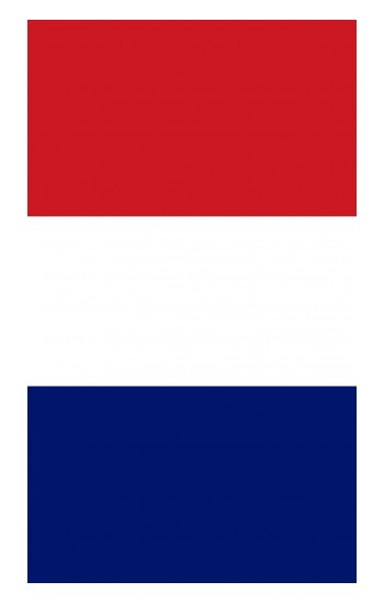 Printed Flag of France and the Netherlands iPad Air (2020) Case