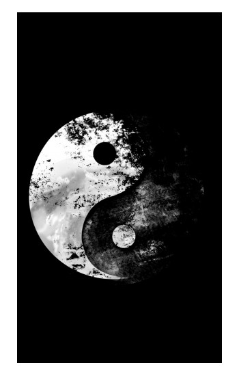 Printed Moon Yin-Yang POP Case