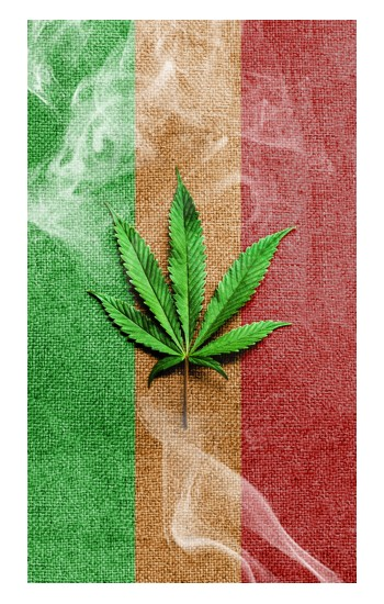 Printed Marijuana Rasta Flag POP Case