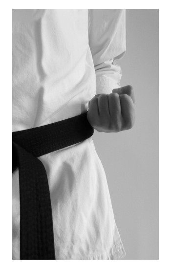 Printed Black Belt Karate iPad Pro 12.9 (2020) Case