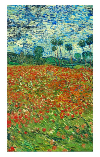Printed Field Of Poppies Vincent Van Gogh iPad Pro 12.9 (2020) Case