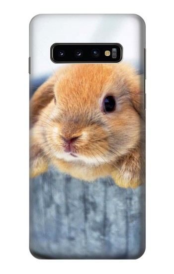 Printed Cute Rabbit Samsung Galaxy S10 Case