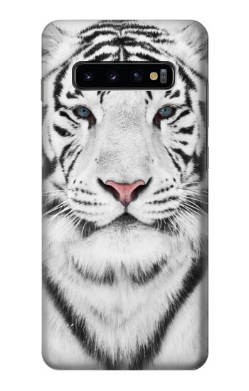 Printed White Tiger Samsung  Galaxy S10 Plus Case