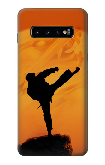 Printed Kung Fu Karate Fighter Samsung  Galaxy S10 Plus Case