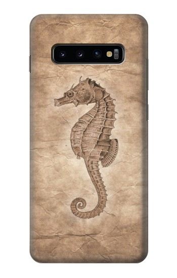 Printed Seahorse Old Paper Samsung  Galaxy S10 Plus Case