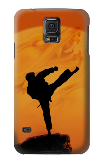 Printed Kung Fu Karate Fighter Samsung Galaxy S5 mini Case