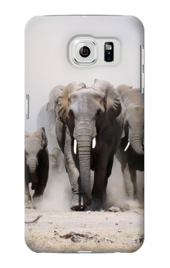 Printed African Elephant Samsung Galaxy S6 edge Case