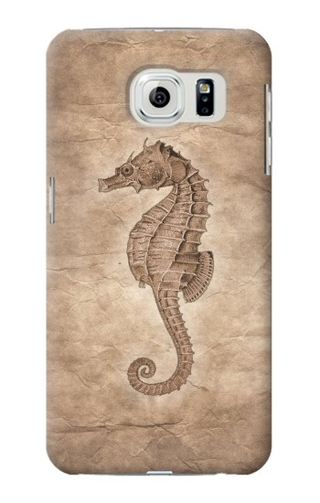 Printed Seahorse Old Paper Samsung Galaxy S6 edge Case