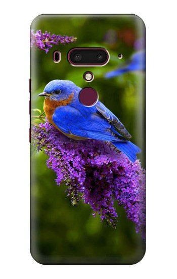 Printed Bluebird of Happiness Blue Bird HTC U12+ Case