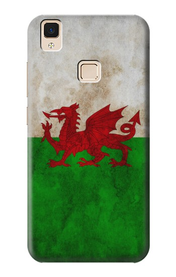 Printed Wales Red Dragon Flag Apple iPad 3 / 4 Case