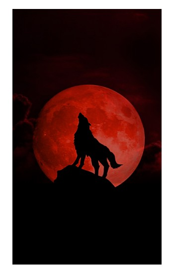 Printed Wolf Howling Red Moon Apple Watch Band (40mm) Case