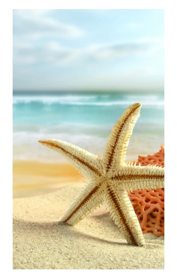 Printed Starfish on the Beach Apple Watch Band (44mm) Case