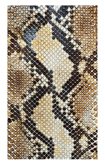 Printed Snake Skin Texture Apple Watch Band (44mm) Case