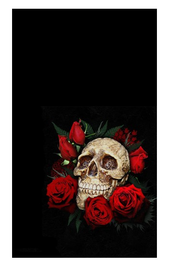 Printed Dark Gothic Goth Skull Roses Apple Watch Band (44mm) Case