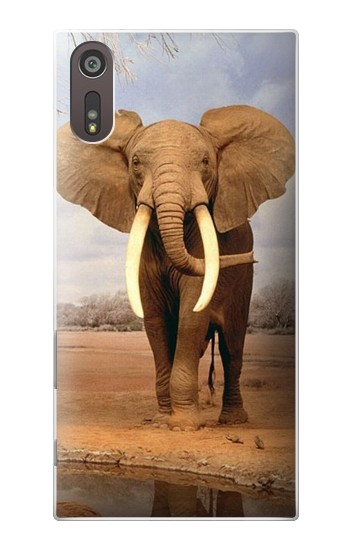 Printed African Elephant Sony Xperia XZ Case