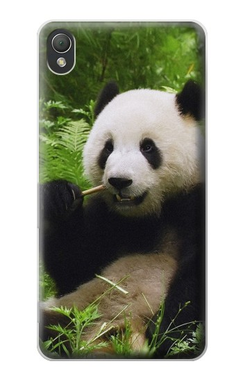 Printed Panda Enjoy Eating Sony Xperia Z3 Case