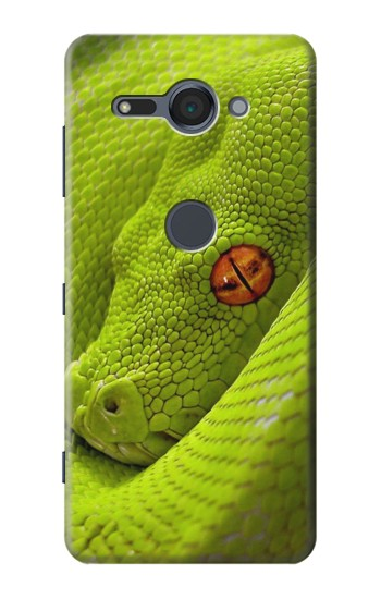 Printed Green Snake Sony Xperia XZ2 Compact Case