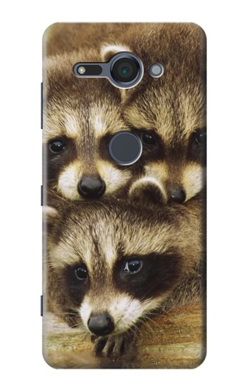 Printed Baby Raccoons Sony Xperia XZ2 Compact Case